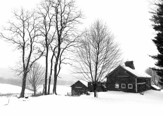 Barns in Snowstorm